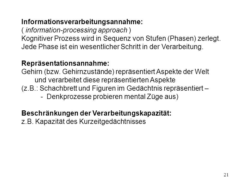 Informationsverarbeitungsannahme: