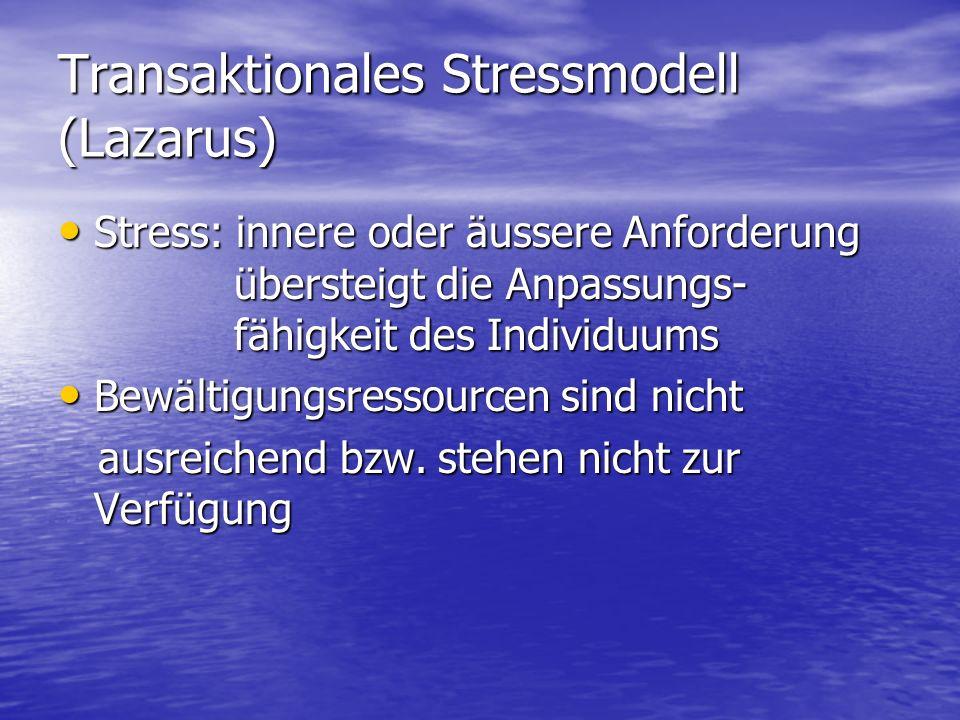 Transaktionales Stressmodell (Lazarus)