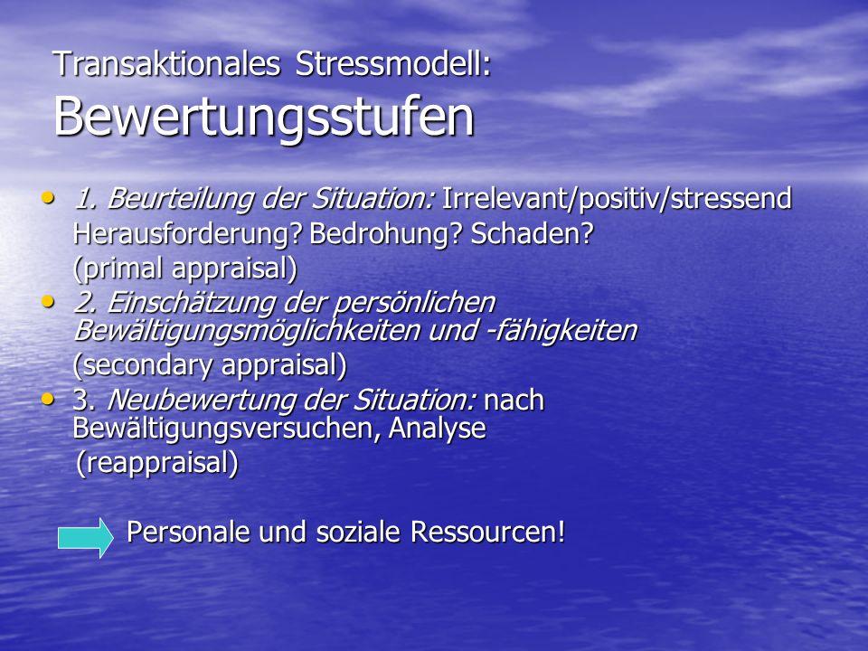 Transaktionales Stressmodell: Bewertungsstufen