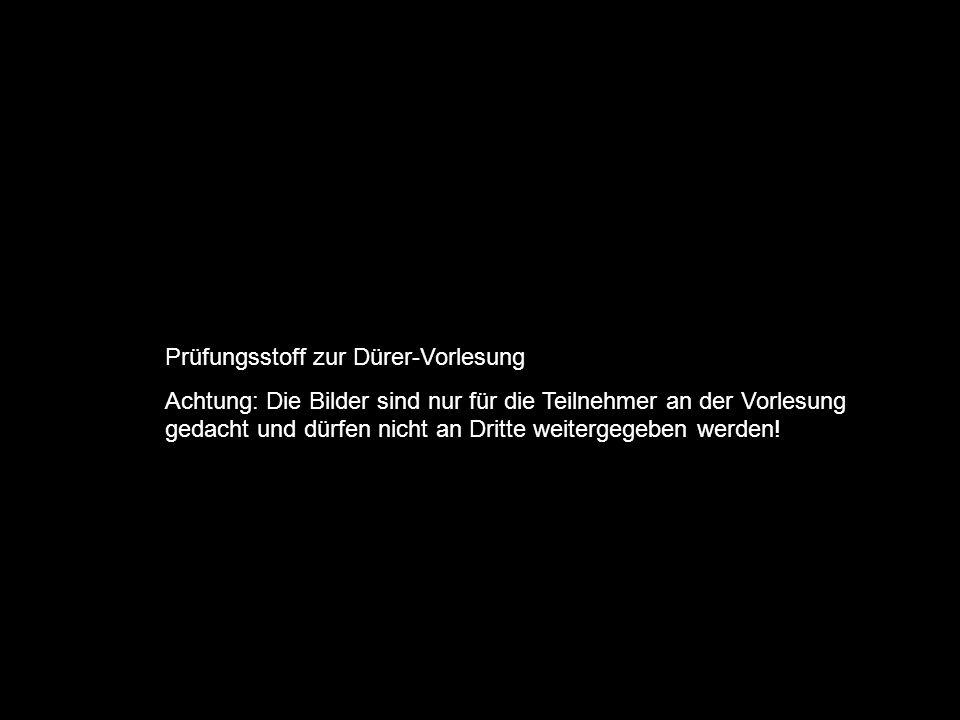 Prüfungsstoff zur Dürer-Vorlesung