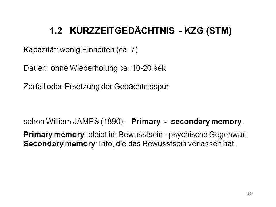 1.2 KURZZEITGEDÄCHTNIS - KZG (STM)