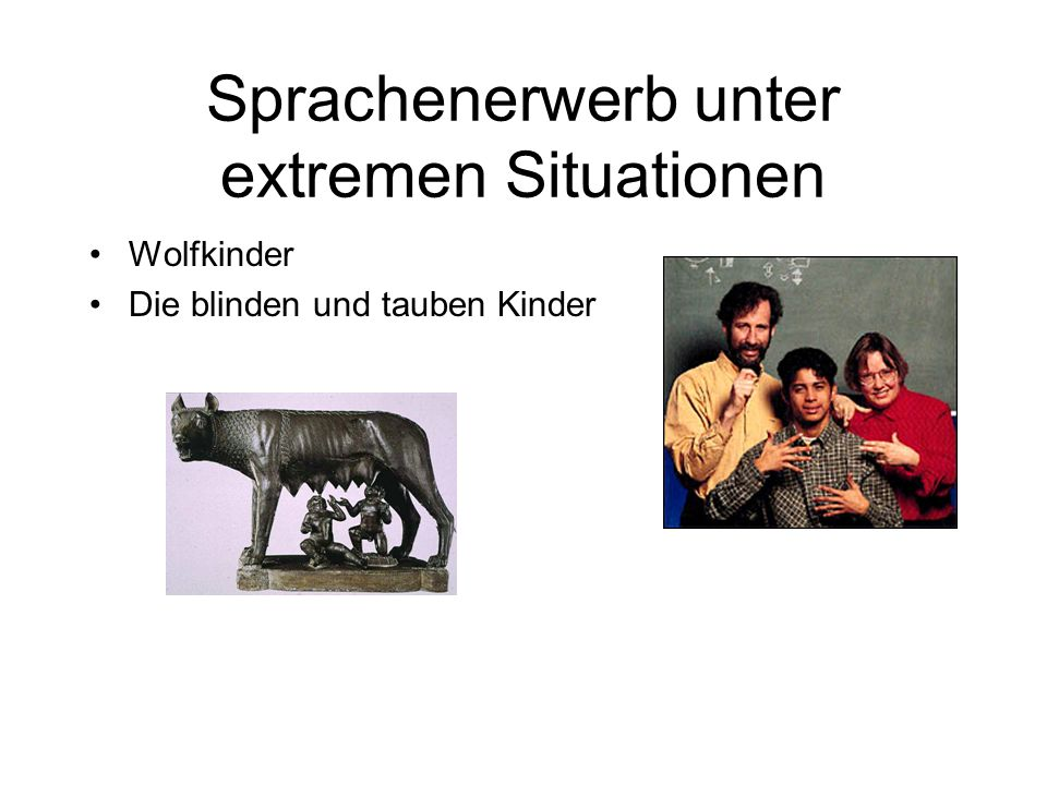 Sprachenerwerb unter extremen Situationen