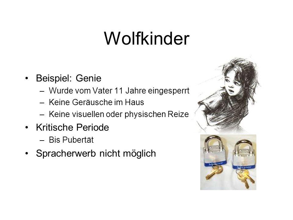Wolfkinder Beispiel: Genie Kritische Periode