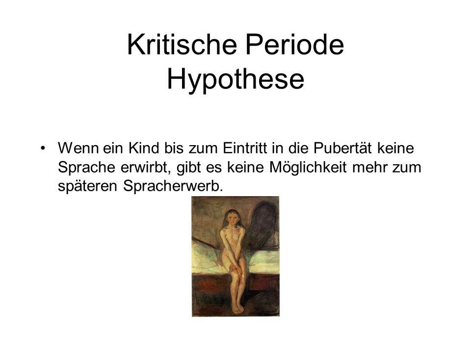 Kritische Periode Hypothese