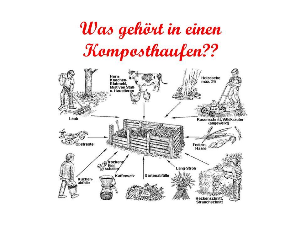 Was gehört in einen Komposthaufen