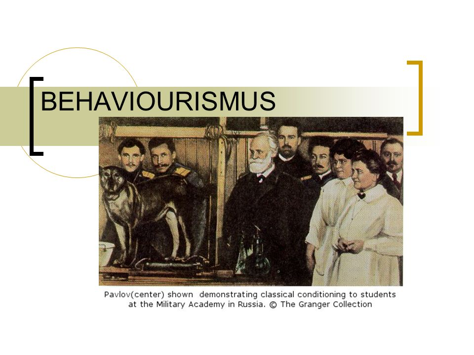 BEHAVIOURISMUS