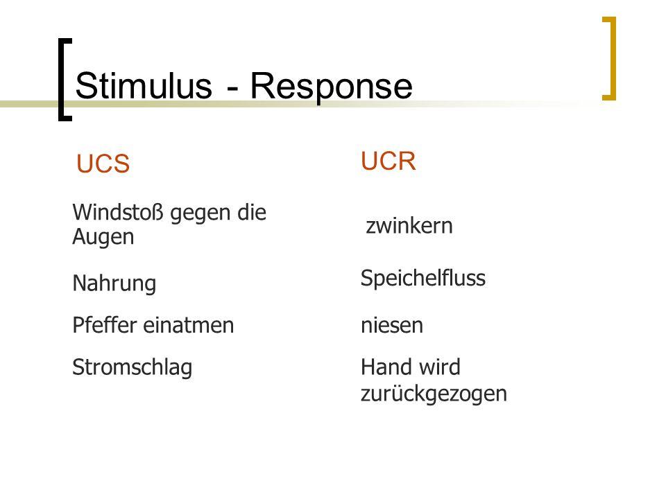 Stimulus - Response UCS UCR Windstoß gegen die Augen zwinkern