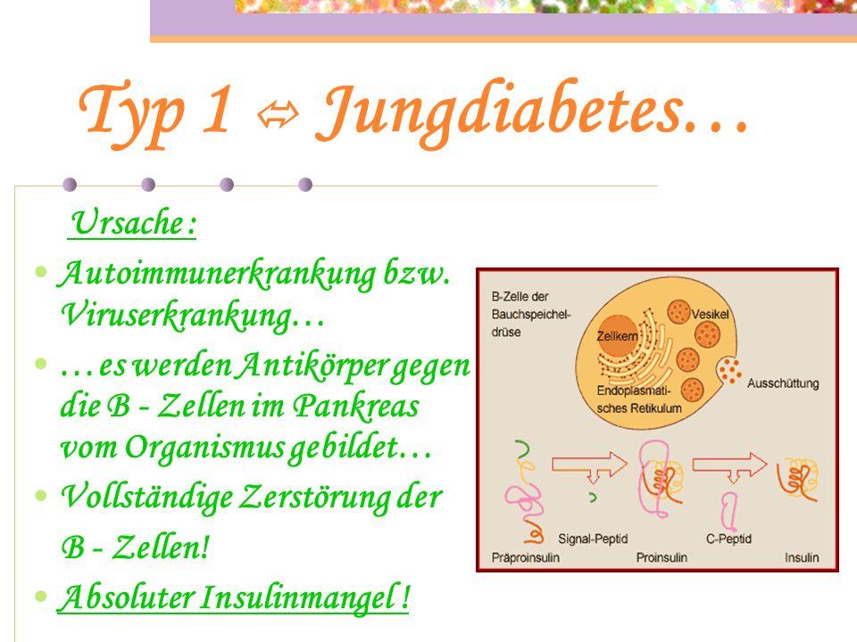Typ 1  Jungdiabetes… Autoimmunerkrankung bzw. Viruserkrankung…