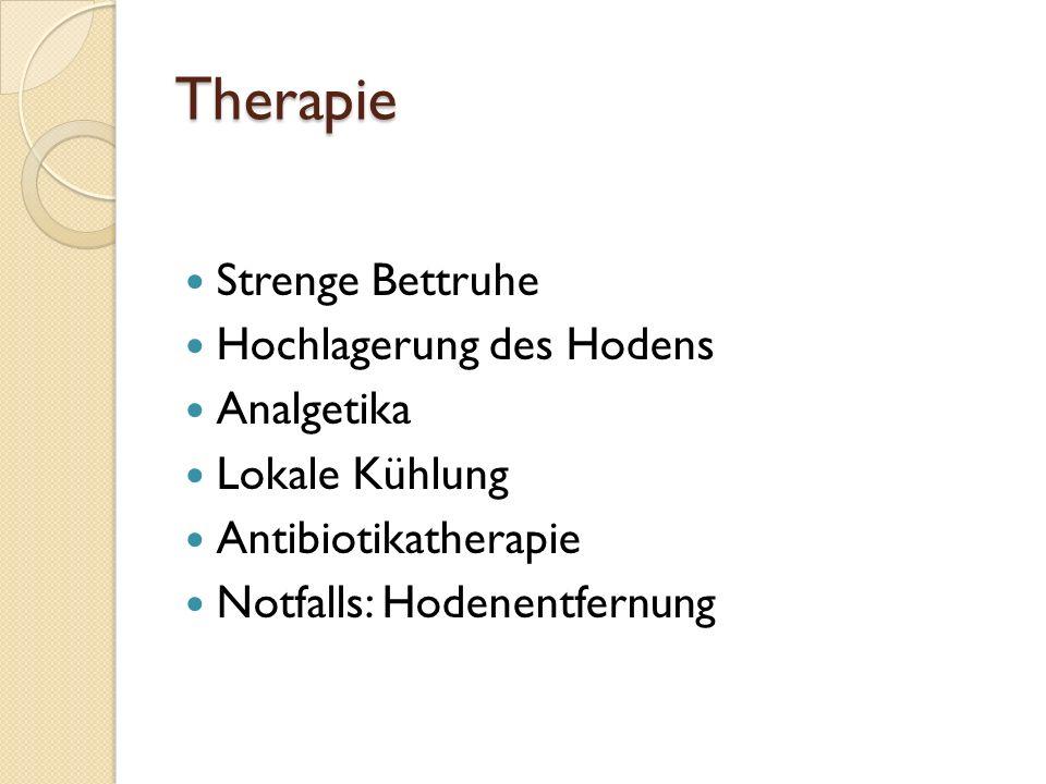 Therapie Strenge Bettruhe Hochlagerung des Hodens Analgetika