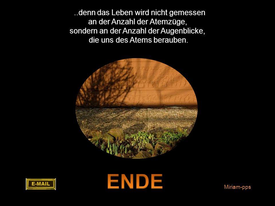 ENDE ..denn das Leben wird nicht gemessen an der Anzahl der Atemzüge,