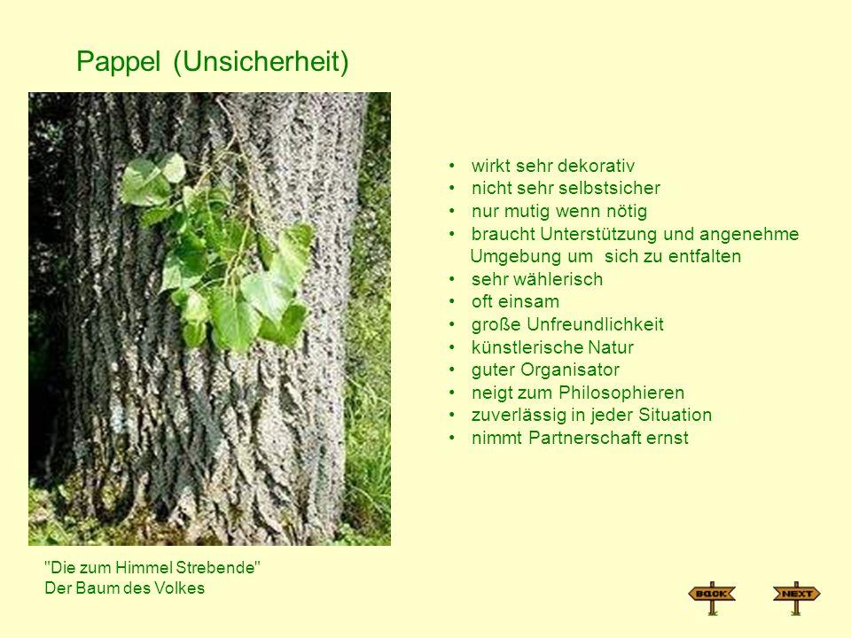 Pappel (Unsicherheit)