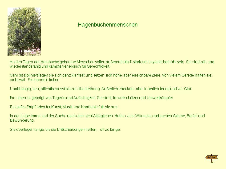 Hagenbuchenmenschen