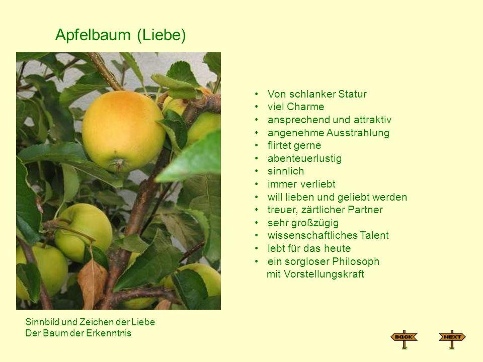 Apfelbaum (Liebe) Von schlanker Statur viel Charme