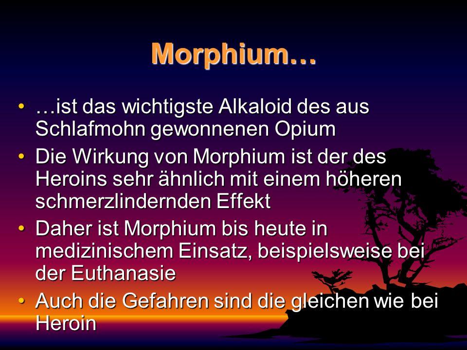 Morphium… …ist das wichtigste Alkaloid des aus Schlafmohn gewonnenen Opium.