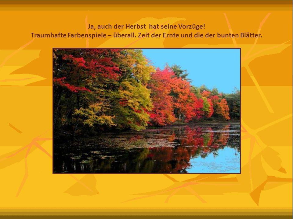 Ja, auch der Herbst hat seine Vorzüge!