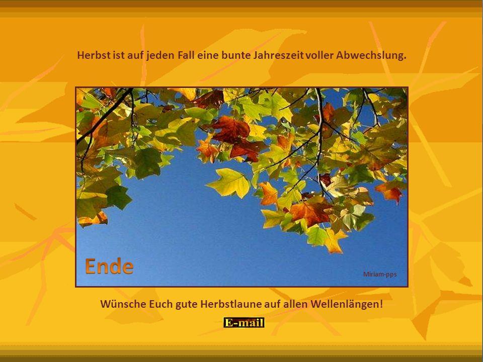 Herbst ist auf jeden Fall eine bunte Jahreszeit voller Abwechslung.