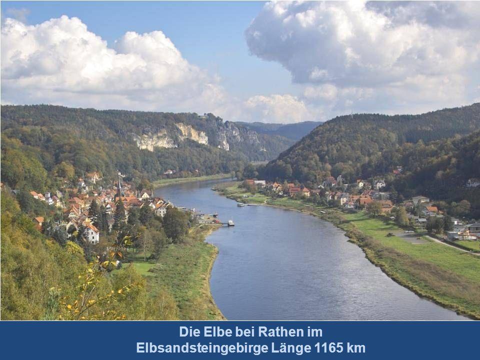 Die Elbe bei Rathen im Elbsandsteingebirge Länge 1165 km