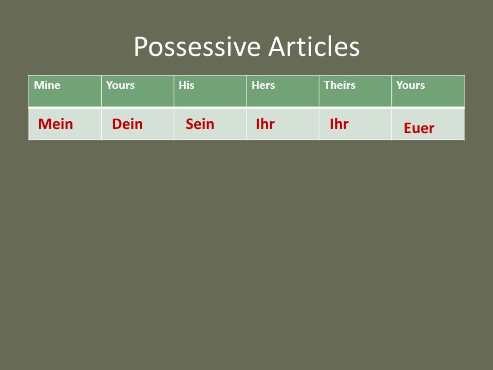 Possessive Articles Mein Dein Sein Ihr Ihr Euer Mine Yours His Hers