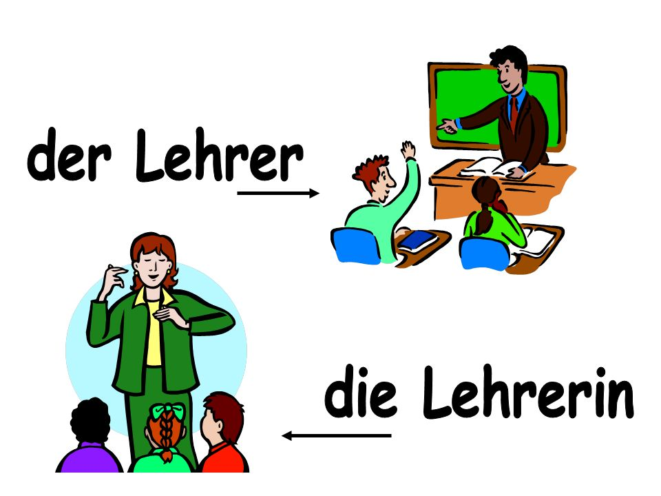 der Lehrer die Lehrerin