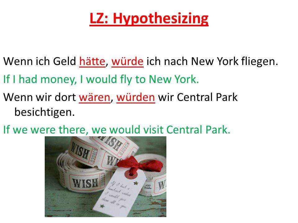 LZ: Hypothesizing