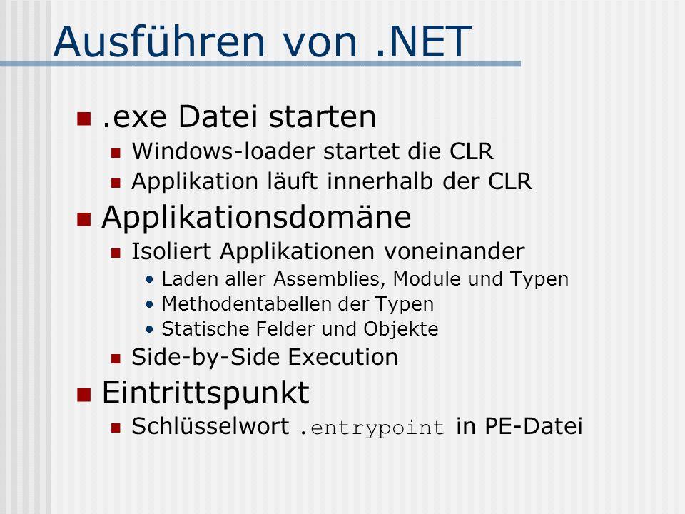 Ausführen von .NET .exe Datei starten Applikationsdomäne