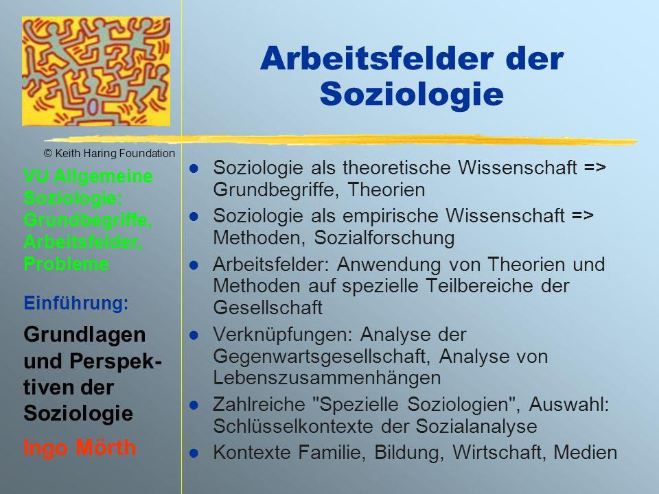 Arbeitsfelder der Soziologie