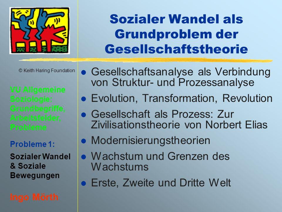 Sozialer Wandel als Grundproblem der Gesellschaftstheorie