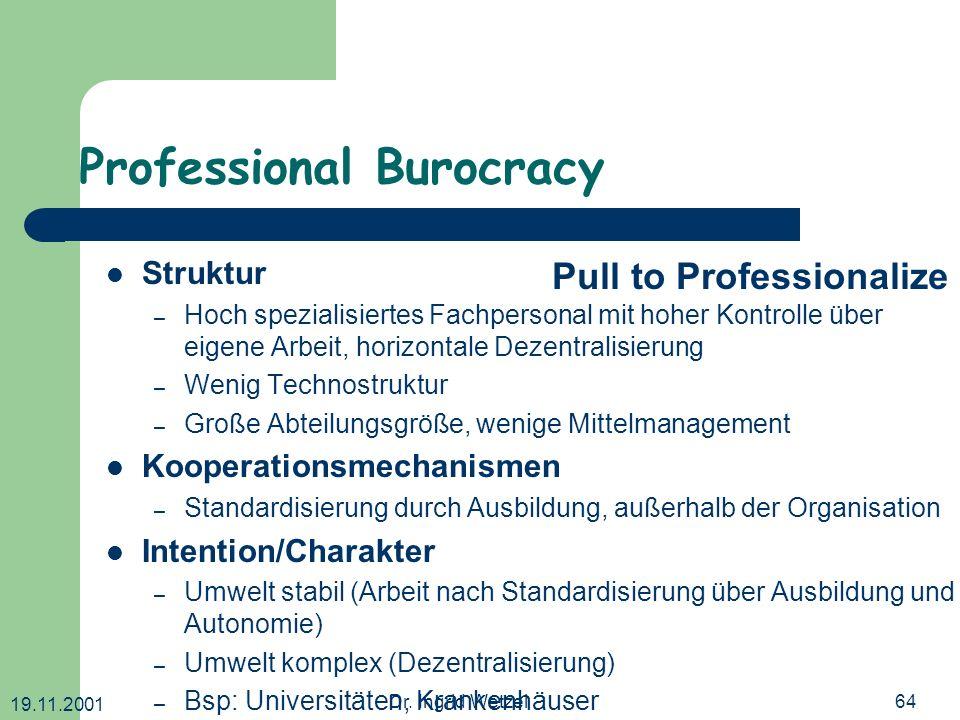 Professional Burocracy