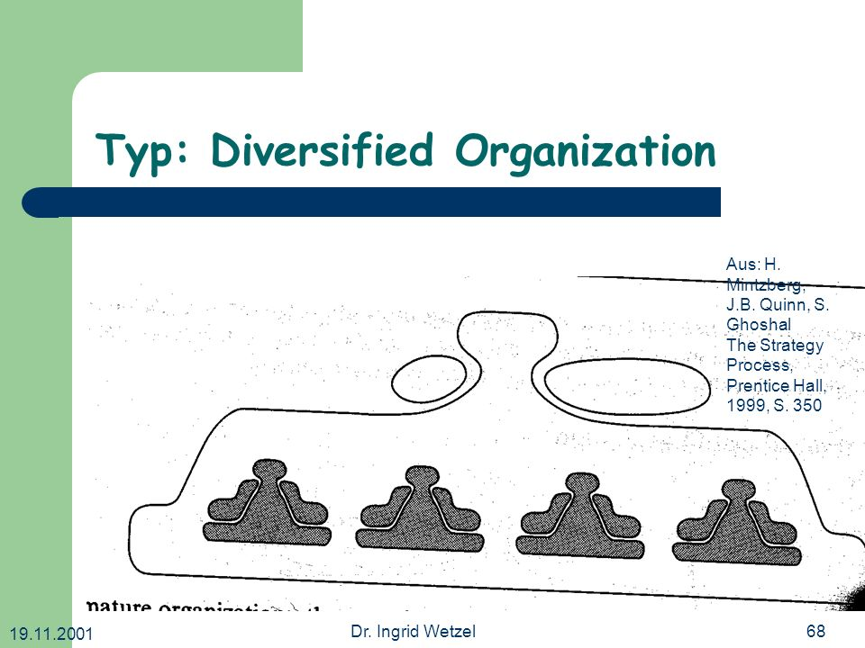 Typ: Diversified Organization