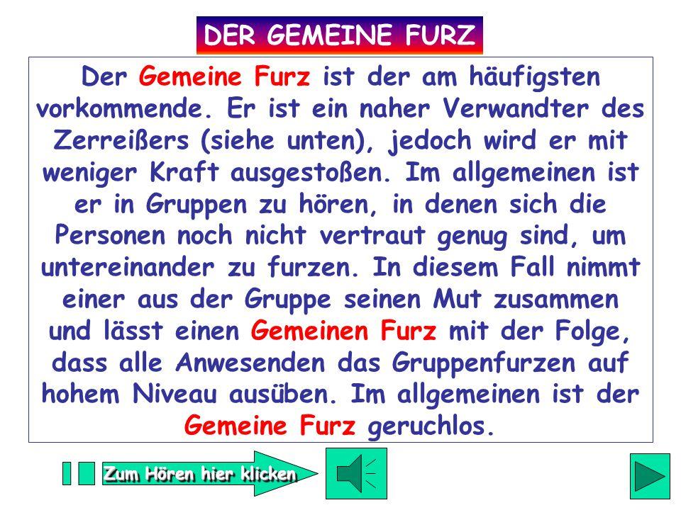 DER GEMEINE FURZ