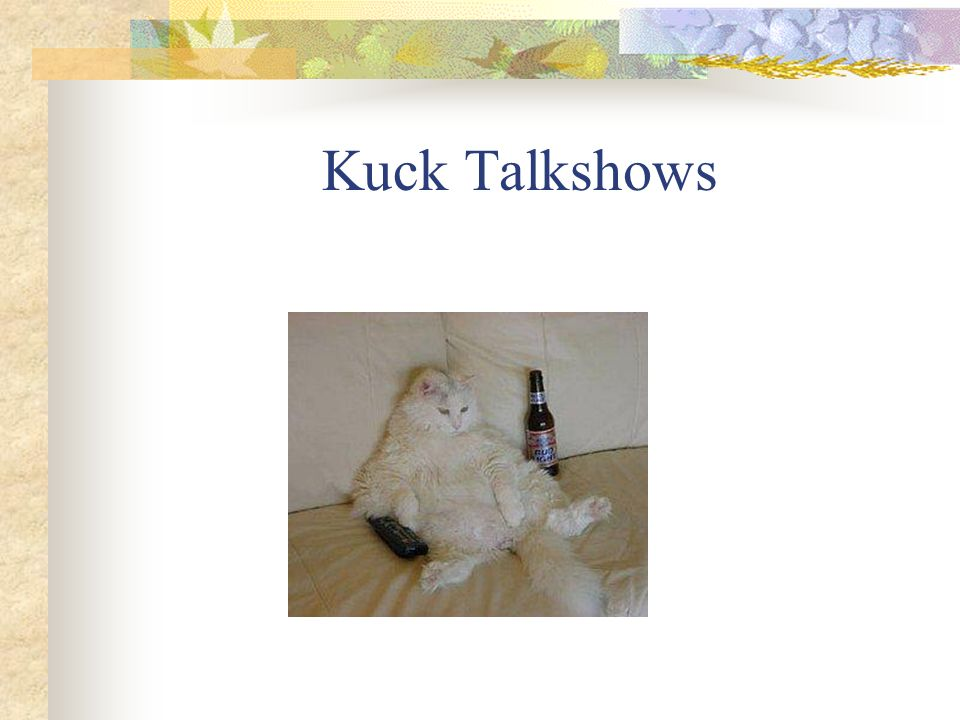 Kuck Talkshows