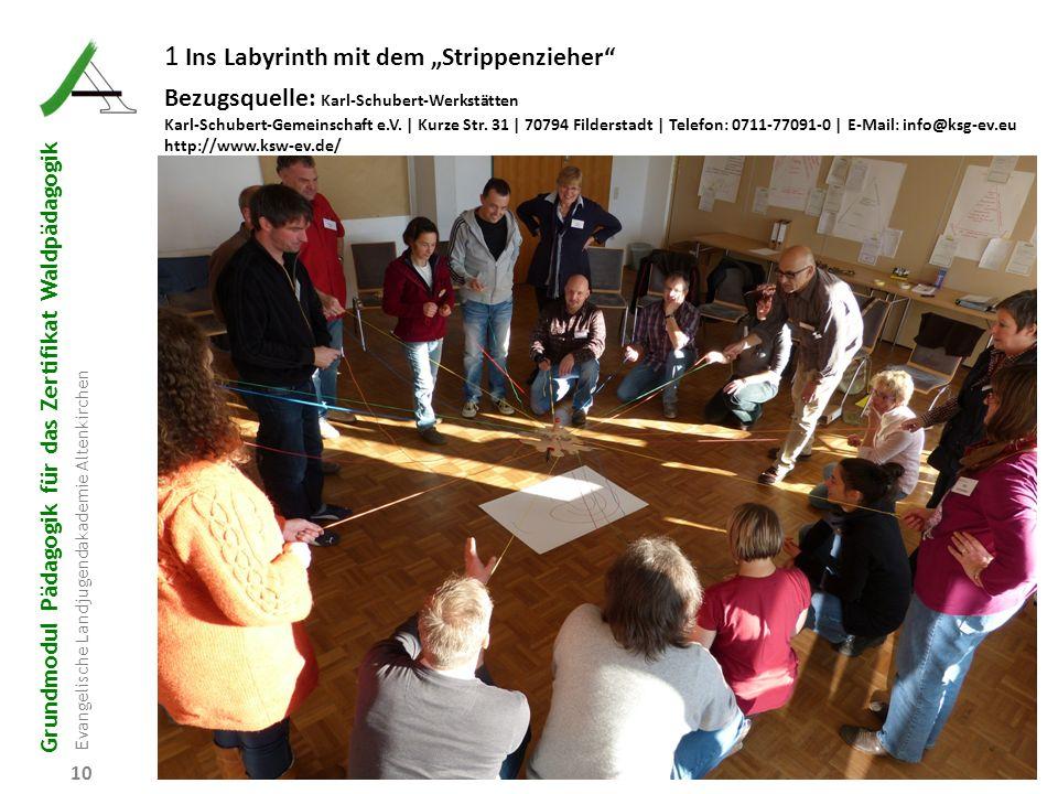 "1 Ins Labyrinth mit dem ""Strippenzieher"