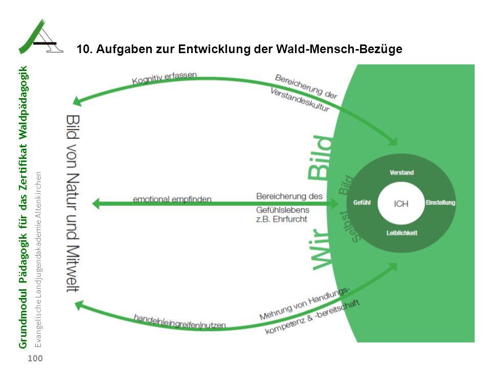 10. Aufgaben zur Entwicklung der Wald-Mensch-Bezüge