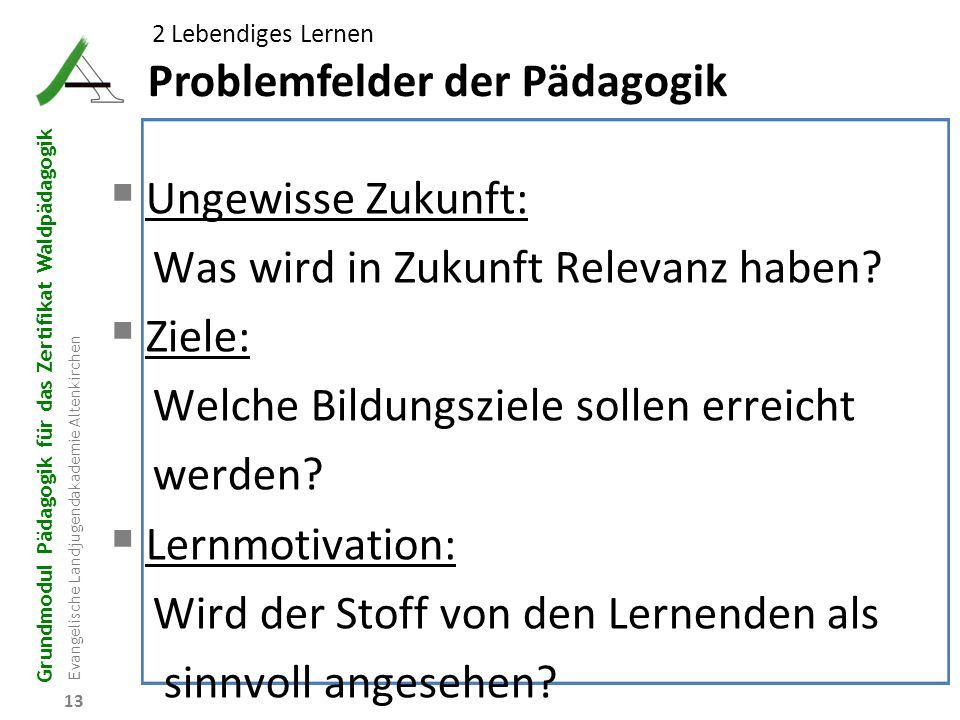 Problemfelder der Pädagogik