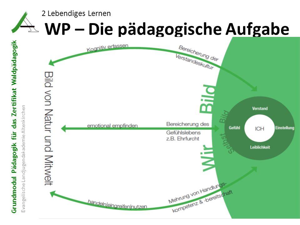WP – Die pädagogische Aufgabe