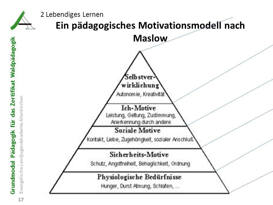 Ein pädagogisches Motivationsmodell nach Maslow