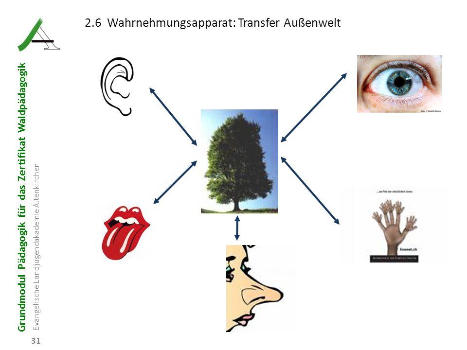 2.6 Wahrnehmungsapparat: Transfer Außenwelt