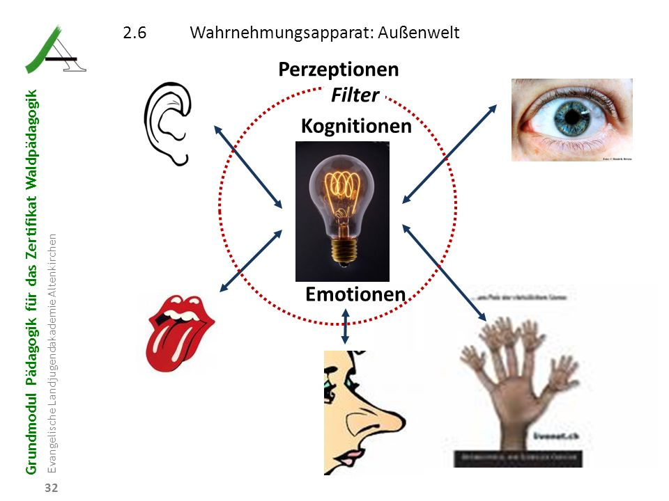 Perzeptionen Filter Kognitionen Emotionen