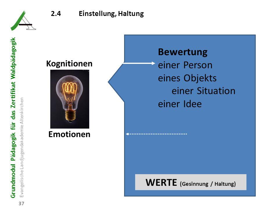 WERTE (Gesinnung / Haltung)