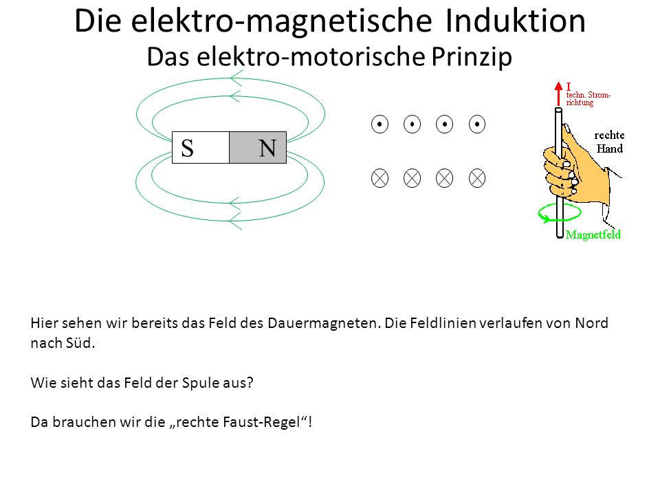 Die elektro-magnetische Induktion