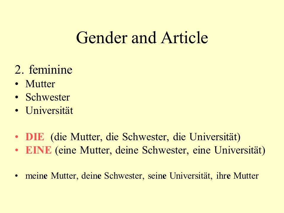 Gender and Article 2. feminine Mutter Schwester Universität
