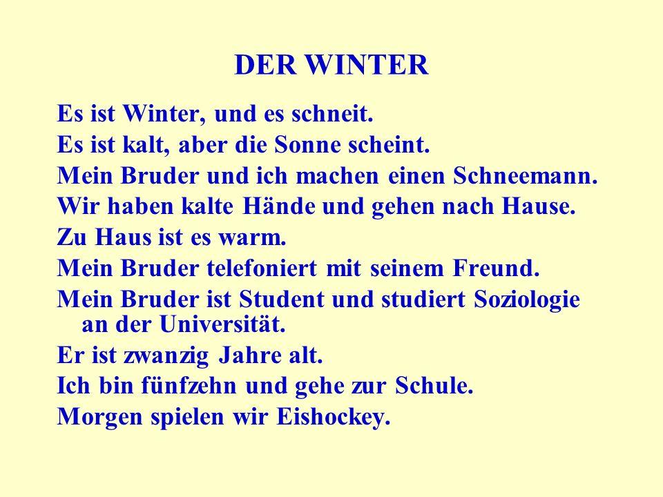DER WINTER Es ist Winter, und es schneit.