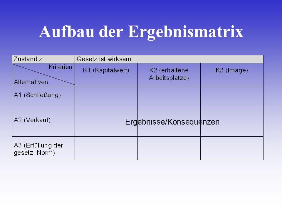 Aufbau der Ergebnismatrix