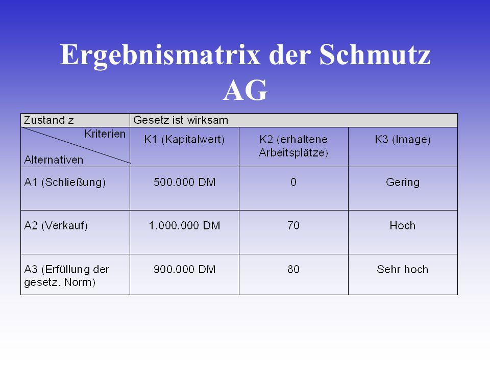 Ergebnismatrix der Schmutz AG