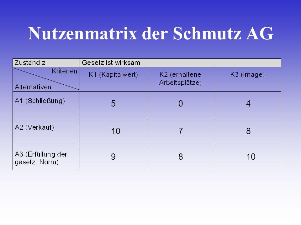 Nutzenmatrix der Schmutz AG