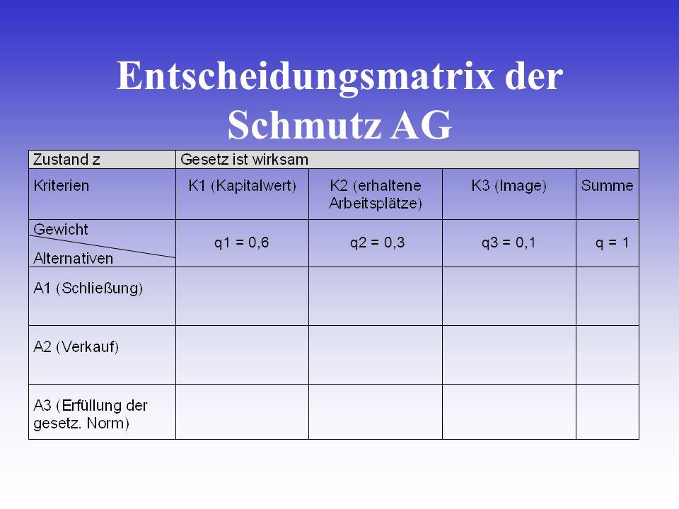 Entscheidungsmatrix der Schmutz AG