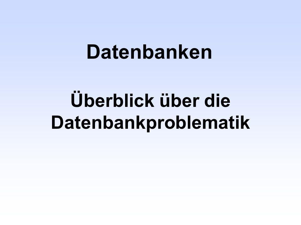 Überblick über die Datenbankproblematik