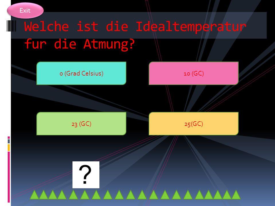 Welche ist die Idealtemperatur fur die Atmung
