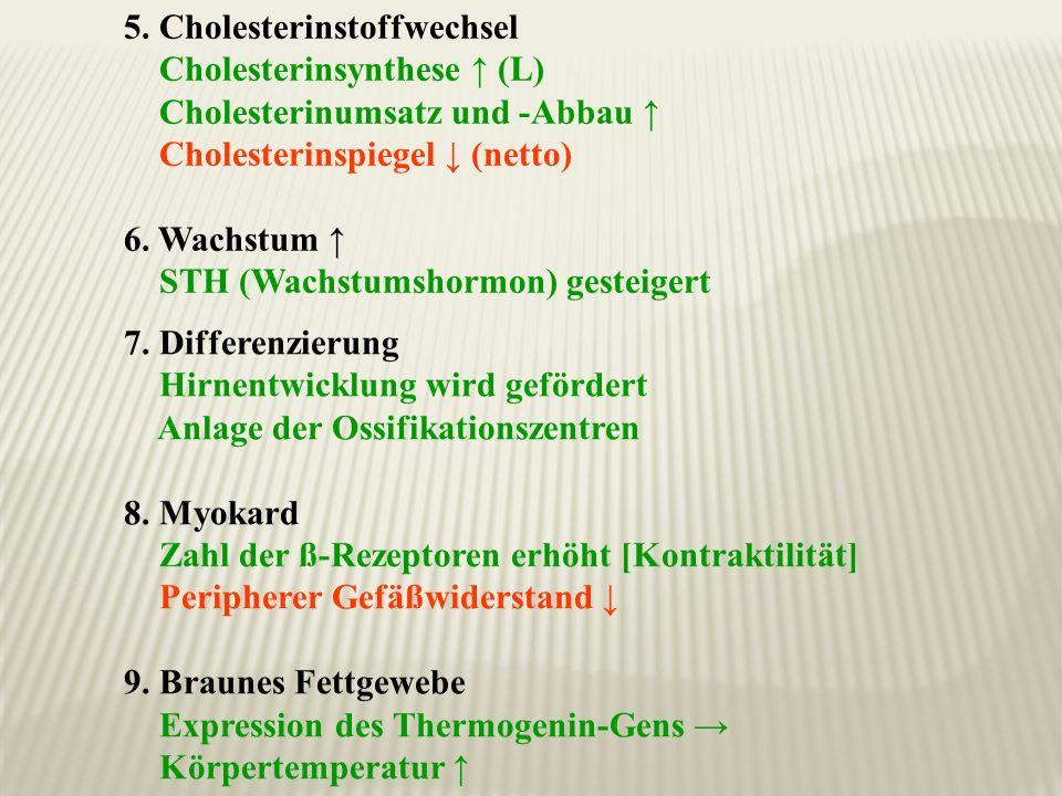 5. Cholesterinstoffwechsel