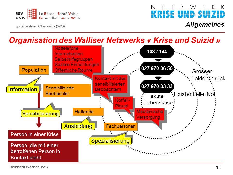 Organisation des Walliser Netzwerks « Krise und Suizid »